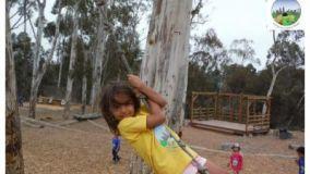 Nitrous Swing